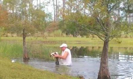 Βίντεο: Πώς ένας άντρας στη Φλόριντα έσωσε το κουτάβι του από τον αλιγάτορα