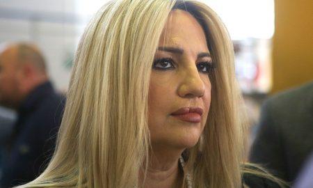 Φώφη Γεννηματά: «Στη χώρα με τη μεγαλύτερη διάρκεια σε καραντίνα, το τρίτο κύμα πανδημίας είναι εκτός ελέγχου