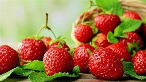 Φράουλα: Ο ανοιξιάτικος σύμμαχος στη δίαιτά σας