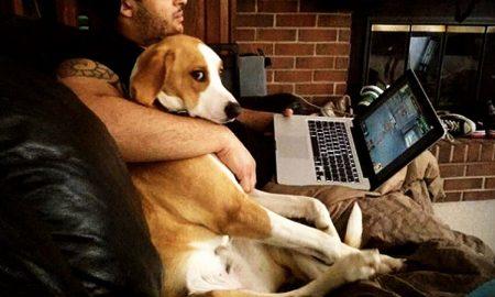 Σκύλος: Και όμως οι έρευνες δείχνουν πως το αγαπημένο σας κατοικίδιο ζηλεύει